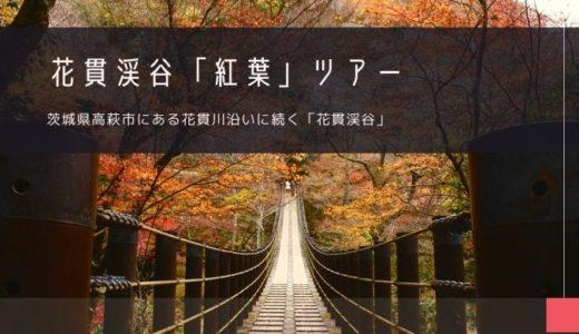 花貫渓谷「紅葉」ツアー特集!
