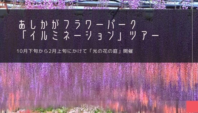 あしかがフラワーパーク「イルミネーション」ツアー特集!