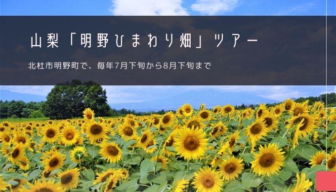 山梨「明野ひまわり畑」ツアー特集!