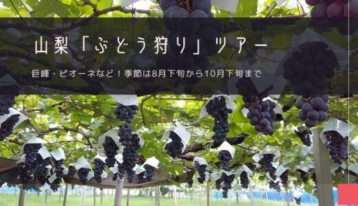 山梨「ぶどう狩り」おすすめツアー特集!
