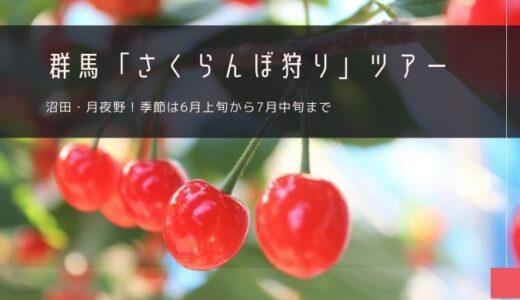 群馬「さくらんぼ狩り」ツアー特集!