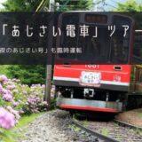 箱根「あじさい電車」おすすめツアー特集!夜はライトアップも