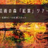 環境芸術の森「紅葉」おすすめツアー特集!