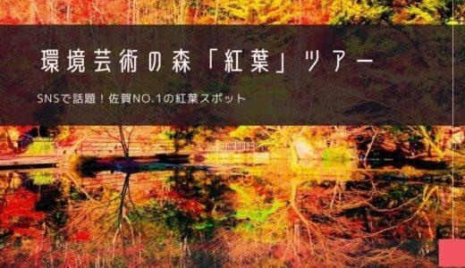 環境芸術の森「紅葉」ツアー特集!