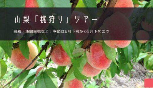 山梨「桃狩り」おすすめツアー!