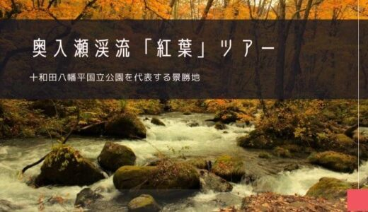 奥入瀬渓流「紅葉」おすすめツアー特集!