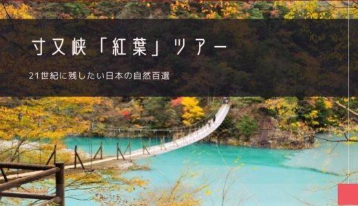 寸又峡「紅葉」ツアー特集!