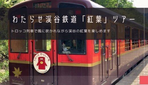 わたらせ渓谷鉄道トロッコ列車「紅葉」おすすめツアー特集!