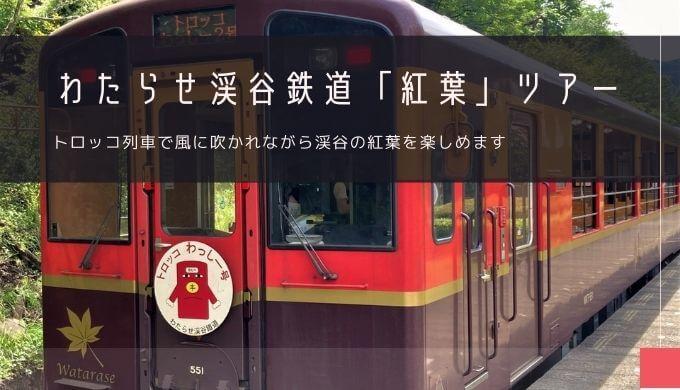 わたらせ渓谷鉄道トロッコ列車の紅葉 おすすめツアー特集!