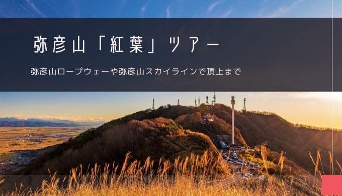 弥彦山「紅葉」おすすめツアー特集!